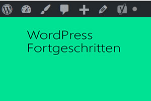 Wordpress lokal installieren