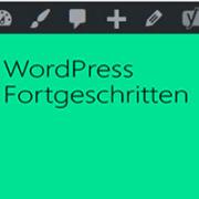 Die Leistung von WordPress verbessern