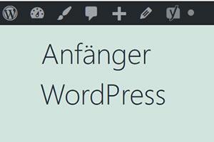 Verwendung von Kategorien in Wordpress-Beiträgen